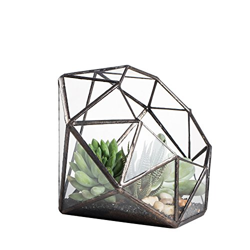 NCYP Large Eight-Surface Diamond Shape Geometric Glass Terrarium Succulent Plant Flower Pot