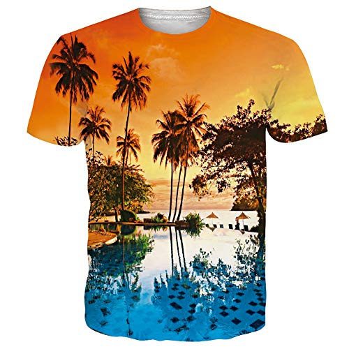 Goodstoworld Designer Shirts for Men Loose Fit Graphic Tee Shirts Sunset 3D Patterns Palm Coconut Tree Polyester Workout Running Tropical Hawaiian T-Shirts Shorts Summer Clothing, Medium (Making A Palm Tree Out Of Paper)