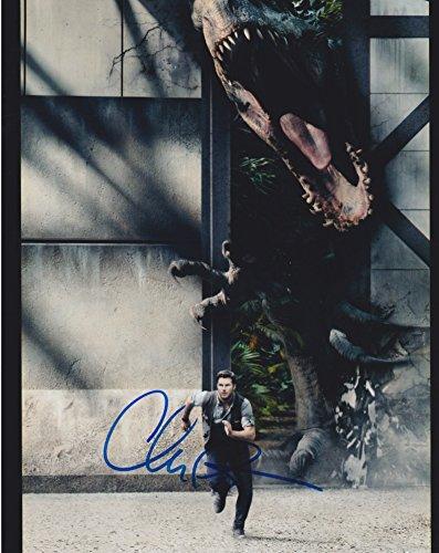 Chris Pratt (Jurassic World) signed 8x10 photo