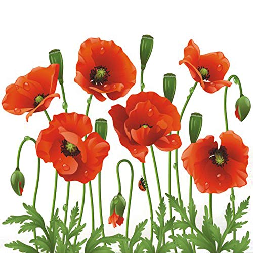 (DNVEN 20 inches x 16 inches Removable Beautiful Poppies Flower Wall Decals Stickers Home Rooms Bedroom Living Room Kids Room Nursery Peel and Stick Wall Decor Wall Mural Wallpapers)