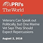 Veterans Can Speak out Politically, but One Marine Vet Says They Should Expect Repercussions | Stephen Snyder