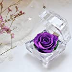 Preserved-Fresh-Flower-Eternal-Rose-with-Acrylic-Crystal-Ring-Box-Gifts-for-Women-Her-Girls-Mothers-Day-Valentines-Day-ChristmasThanksgiving-Day-Anniversary-Birthday-Wedding-Purple