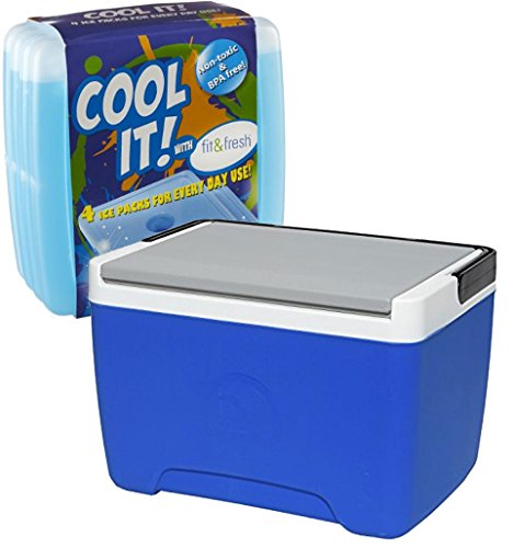 Bundle Includes 2 Items - Igloo Island Breeze Cooler (Majestic Blue/Ash Gray/Black, 9 Quart) and Fit & Fresh Cool Coolers Slim Reusable Ice Packs for Lunch Boxes, Lunch Bags and Coolers, Set of 4,