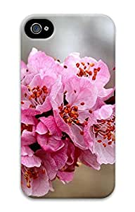 iPhone 4 4s Cases & Covers - Apricot Custom PC Soft Case Cover Protector for iPhone 4 4s