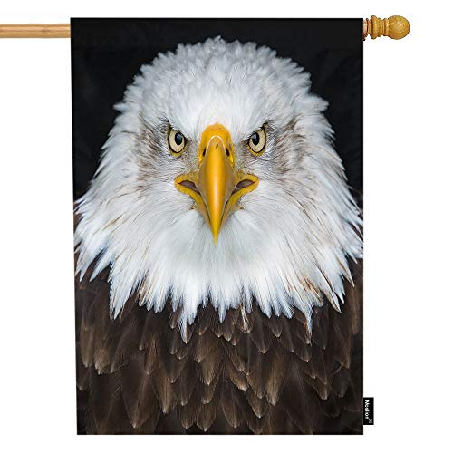 Moslion Eagle House Flag Angry Animal Bird Bald Eagles with Sharp Mouth White Brown Feather Garden Flags 28x40 Inch Double-Sided Banner Welcome Yard Flag Home Outdoor Decor. Lawn Villa