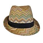 Bohemian Summer Straw Fedora Hat for Women, Cute Chevron Zig Zag Striped, One Size