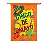 Ornament Collection H192025 Cinco De Mayo Country and Primitive Southwest Decorative Vertical House Flag, 28″ x 40″ inch, Multi-Color For Sale