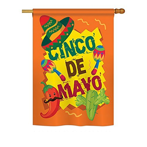Ornament Collection H192025 Cinco De Mayo Country and Primitive Southwest Decorative Vertical House Flag, 28