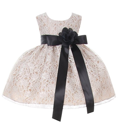 Cinderella Couture Baby-Girls Champagne Lace Dress Black Sash & Flw 18M L 1132B