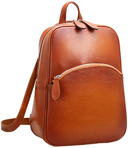 Heshe Women's Casual Leather Backpack Daypack for Ladies (Collection Computer Zippered Flap)