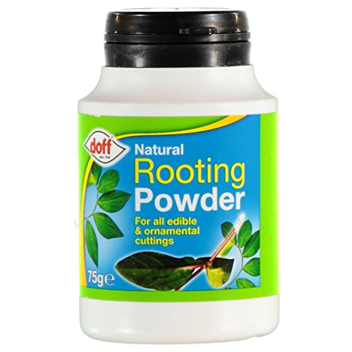 (Doff New Natural Rooting Powder 75g Pack Indoor & Garden Plants)