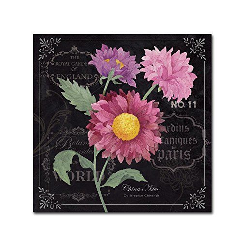 Aster By Fiona Stokes Gilbert 35x35 Inch Canvas Wall Art Shefinds