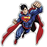 Fan Emblems Superman Character Car Decal Domed Multicolor Clear - DC Comics Automotive Emblem Sticker Applies Easily to Cars - Trucks - Motorcycles - Laptops - Windows - Almost Anything