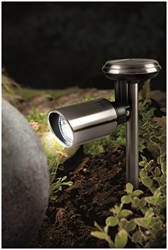 Cole Bright Solar Garden Lights in US - 4