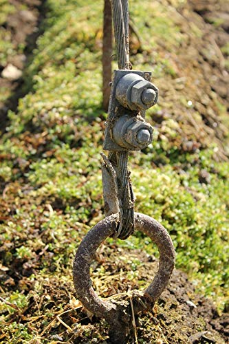 Photography Poster - Hops, Anchor, Field, Eyelet - 24