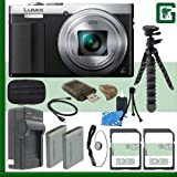 Panasonic Lumix DMC-ZS50 Digital Camera (Silver) + 64GB Greens Camera Bundle 3