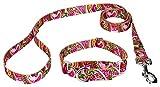Country Brook Design Pink Paisley Martingale Dog Collar & Leash - Medium