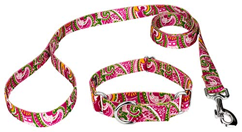 Country Brook Design Pink Paisley Martingale Dog Collar & Leash - Small