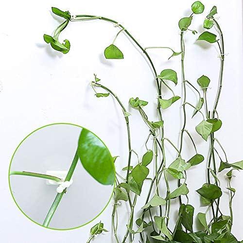 Tabanlly Kletterpflanze Kletterwand Kletterpflanze Kletterpflanze Kletterpflanze Kletterpflanze Clips für Zuhause und Büro