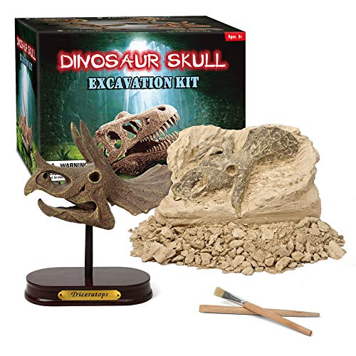 XX Excavation Dig Kit for Kids Large Dinosaur Head Skull Triceratops]()