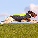 Illumifun Waterproof Dog Coat Nylon Dog Vest Apparel with Soft Fleece Lining Reflective Pet Jacket For Small Dogs When Cold Weather(S, Green)