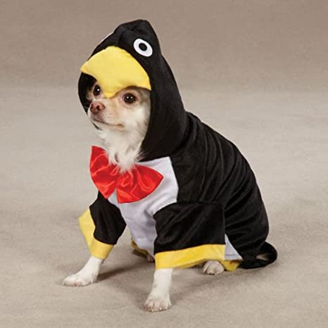 Zack u0026 Zoey Penguin Pup Costume X-Small Black & Amazon.com : Zack u0026 Zoey Penguin Pup Costume X-Small Black : Pet ...
