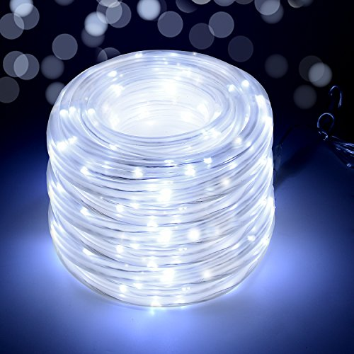 220V Led Rope Light - 2