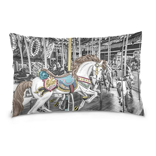 Josid Throw Pillow Cases Covers Double Sided Carousel Merry-Go-Round Roundabout Whirligig 20x26 Inches Invisible Zipper Home Decor for Couch Bed (Dragonfly Whirligig)