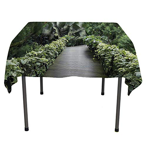 Nature House, Washable Table CoverScenic Wooden Pathway in Singapore Botanical Garden Fence Rainforest Tropical, for Dining Room, 50x50 Inch