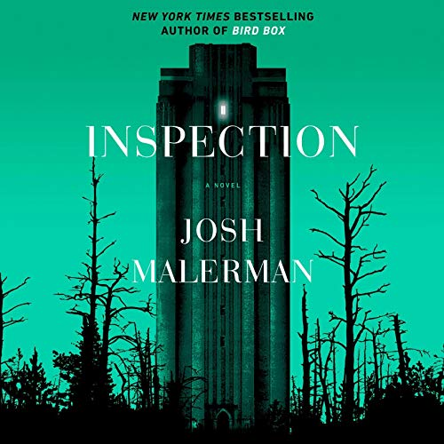 Pdf Fiction Inspection: A Novel