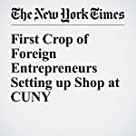 First Crop of Foreign Entrepreneurs Setting up Shop at CUNY | Liz Robbins