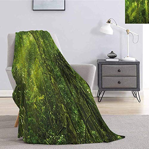 Luoiaax Plant Commercial Grade Printed Blanket Tropical Tranquil Place with Lots of Green Trees Earthly Places Untouched Jungle Queen King W80 x L60 Inch Apple Green (Best Time To Plant Apple Trees In Ohio)