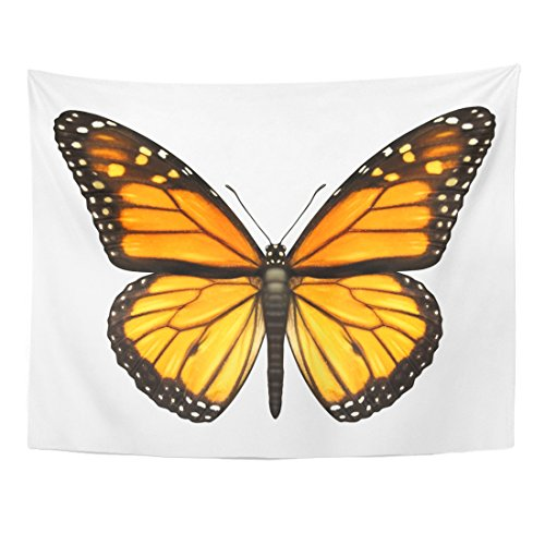 Emvency Tapestry Monarch Butterfly Open Wings in Top View As Flying Home Decor Wall Hanging for Living Room Bedroom Dorm 60x80 Inches