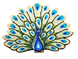 Doormat MAXYOYO Personalized Area Rugs,Hand Embroidery Peacock Floor Mats, Rugs for Bedroom,Beautiful Peacock Handmade Area Rugs indoor. Review