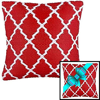 Ambientair Cojín para Exterior, 50 X 50 cm, Rojo, Cojín de Regalo