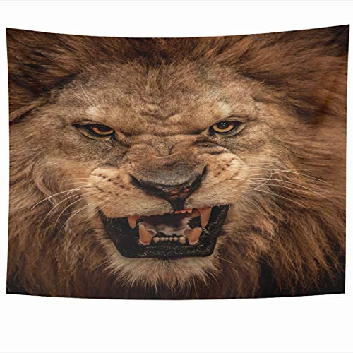 (Ahawoso Tapestry 60 x 50 Inches Strength Roar Closeup Shot Roaring Lion Wild Wildlife Angry Head Growl Mouth Wall Hanging Home Decor Tapestries for Living Room Bedroom Dorm)