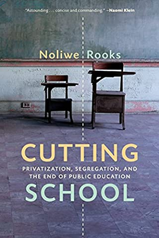 Cutting School: Privatization, Segregation, and the End of Public Education (Public Education)
