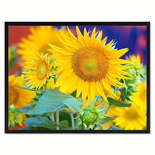 Sunflowers Flower Framed Canvas Print Floral Home Decor