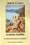 La piara maldita: El endemoniado de Gadará (Evangelio (novelado) nº 17) (Spanish Edition)