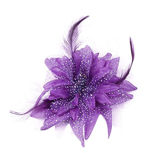 Auranso Beauty Hairclip Barrettes Mesh Net Headband Flower Fascinator Feather Hair Band (Special Occasion Gifts)