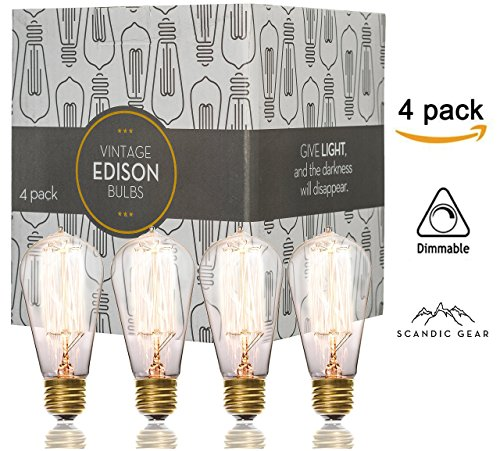 60 watt edison bulb - 8