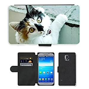 Super Stella Cell Phone Card Slot PU Leather Wallet Case // M00107684 Cat Pussycat // Samsung Galaxy S5 S V SV i9600 (Not Fits S5 ACTIVE)