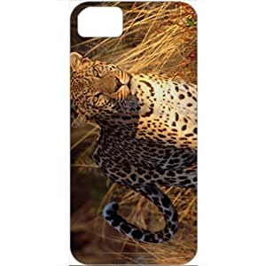 New Arrival Galaxy S5 Case Madrid City Case Cover