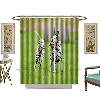 Miki Da Shower Curtains Fabric Two Dalmatian Dogs Playing With One Toy Bathroom Decor Set