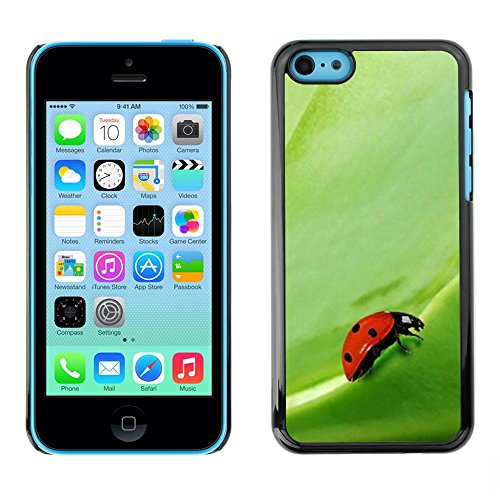 Soft Silicone Rubber Case Hard Cover Protective Accessory Compatible with Apple iPhone 5C - Plant Nature Forrest Flower 104