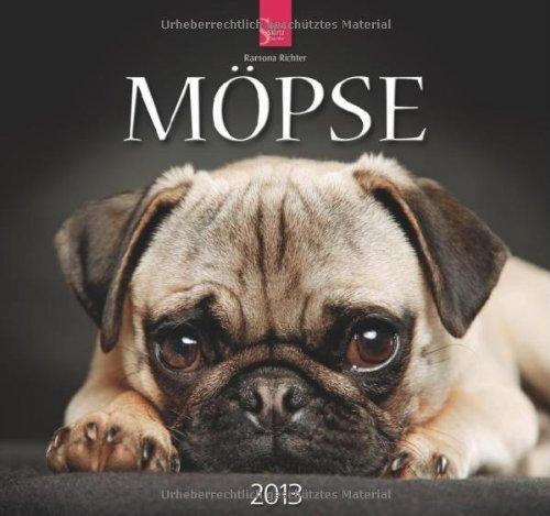 Möpse 2013 - Original Stürtz-Kalender