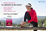 Raspberry Ketones Lean 1200mg - African Mango Acai Berry Green Tea and MORE - Free E-Book Benefits of Raspberry Ketones