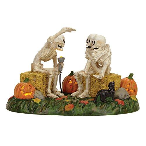 Department 56 Village Halloween Scary Skeleton Stories Accessory Figurine -