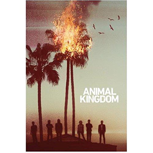 Ellen Barkin 8 Inch x10 Inch Photograph Animal Kingdom (TV Series 2016 - ) w/Cast Palm Tree Ablaze Title Poster kn