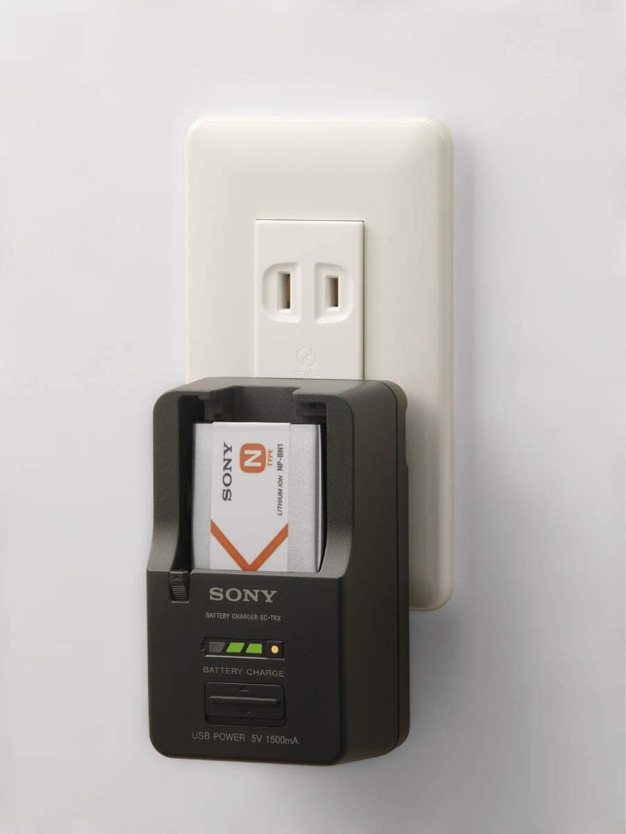 Sony NPBN1.CE - Batería InfoLITHIUM tipo N, color plata